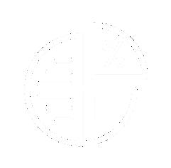 Prikaz stanja v L in %